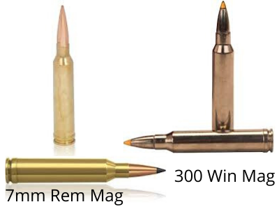 7mm Rem Mag vs 300 Win Mag Size