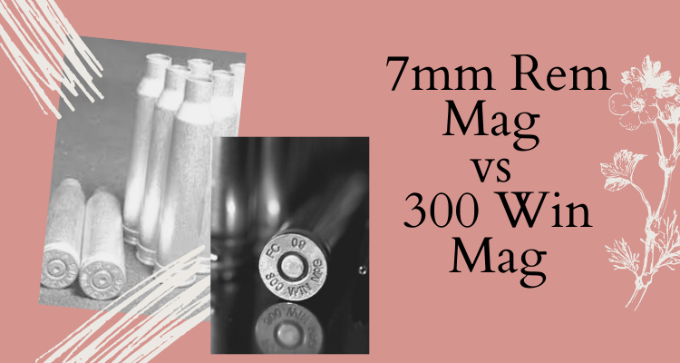 7mm Rem Mag vs 300 Win Mag