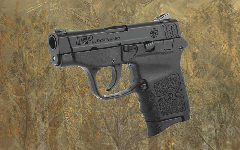 Smith and Wesson Bodyguard 380 Reviews