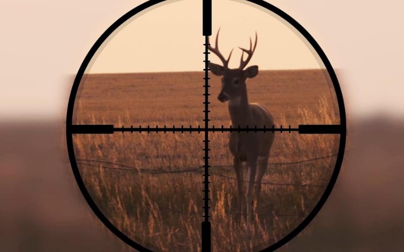 Top Scopes for Deer Hunting Review